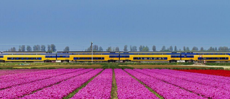 Dutch train in spring | Eurail Four Country Select Pass