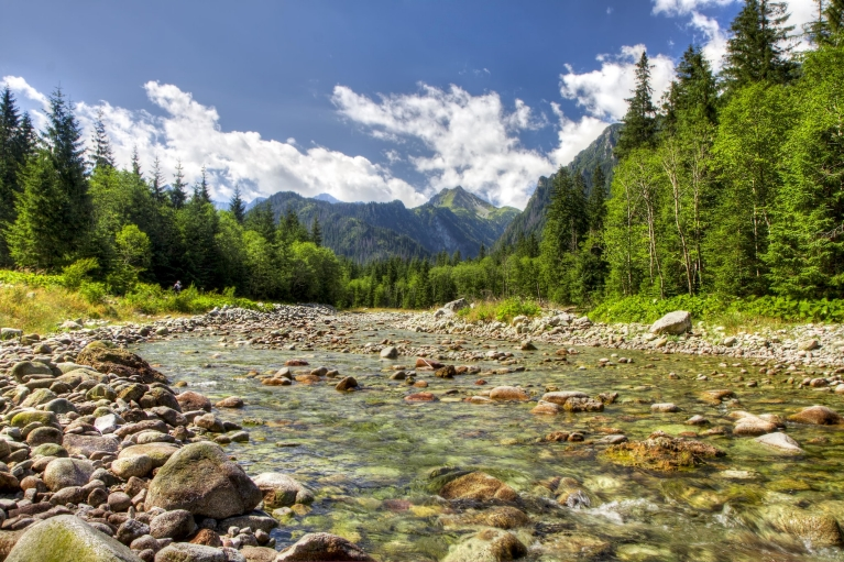 view_to_alps_valley_with_the_river_in_high_tatras_national_park_slovakia