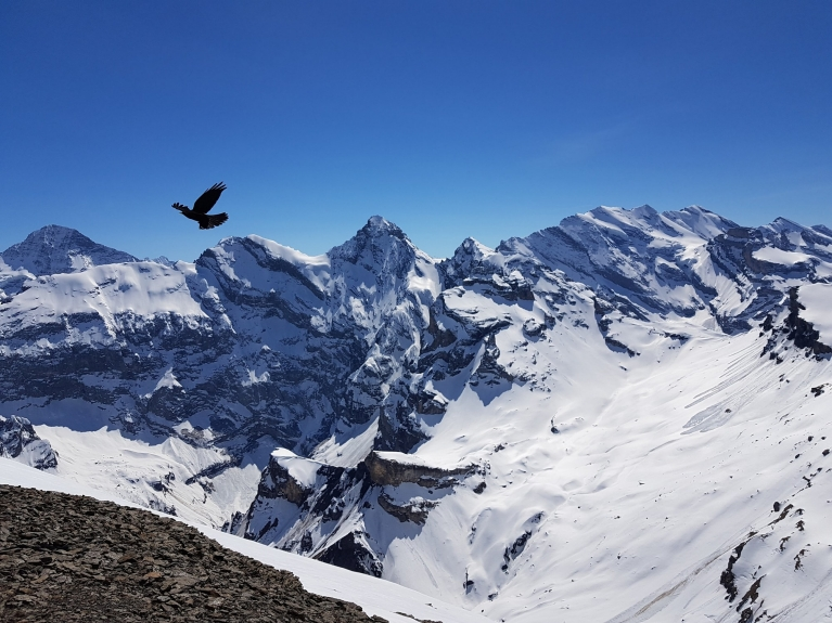 UGC-switzerland-schilthorn-mountain-alps